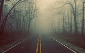 fog road